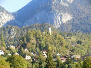 CIMG6045 2011スイス