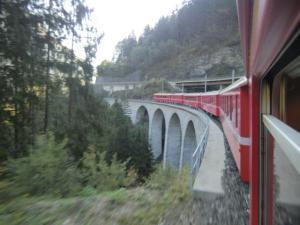 CIMG6038 2011スイス