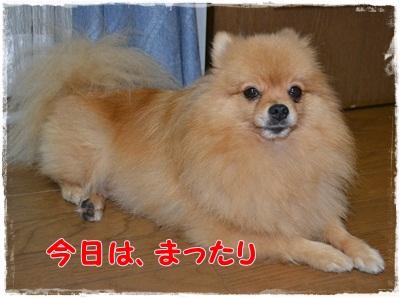 003_20121112213545.jpg