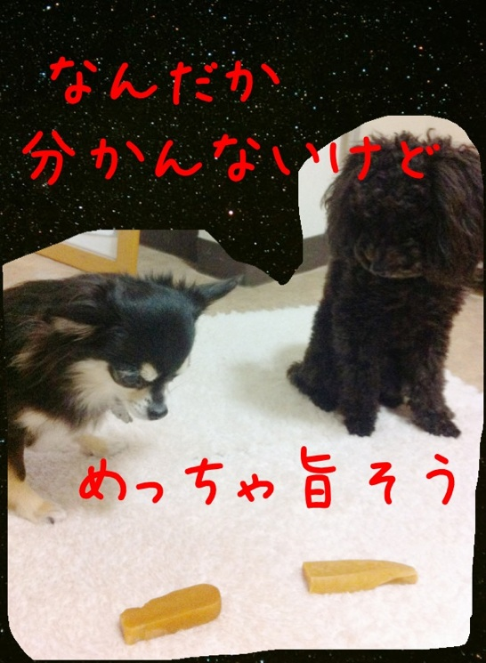 moblog_59f4d4c1.jpg