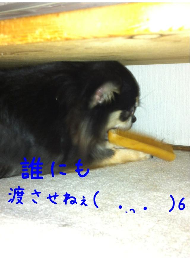 moblog_69d26b73.jpg