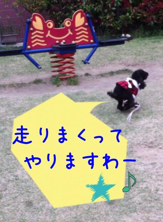moblog_ea27e5eb.jpg
