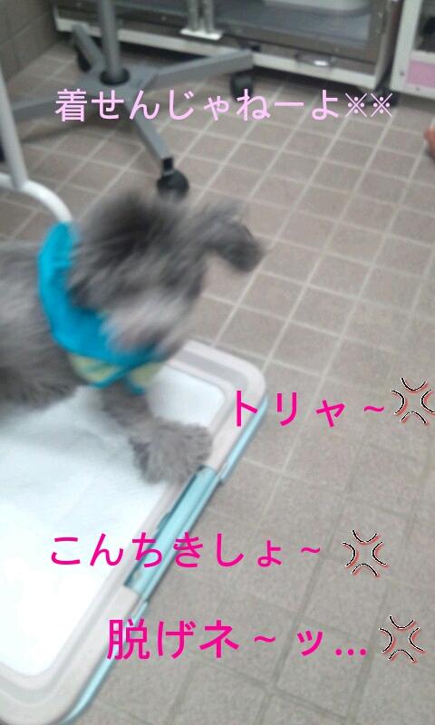 20120712113639[1]