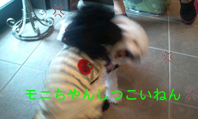 20120715220816[1]