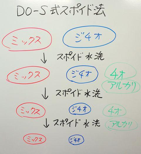 DSC07050.jpg