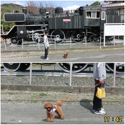 汽車を見て
