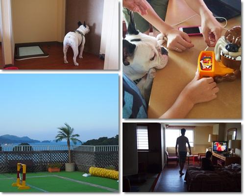 20120808hotel.jpg