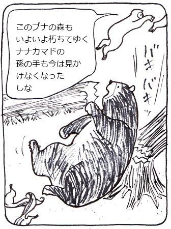 かゆい熊2_R