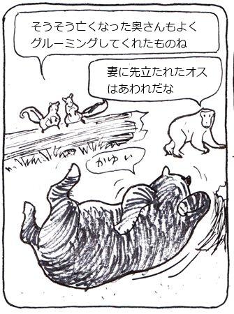 かゆい熊3_R