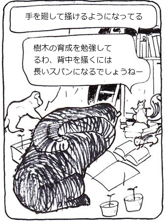 かゆい熊8_R