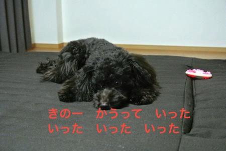 DSC_0663_convert_20121020213555.jpg