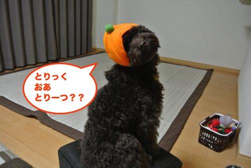 DSC_1190_convert_20121031201524.jpg