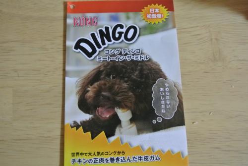 DSC_3055_convert_20130210191820.jpg