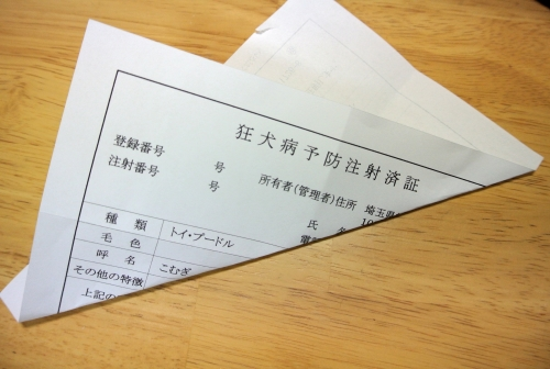 DSC_3767_01.jpg