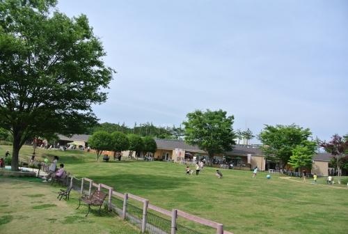 DSC_3994_01.jpg