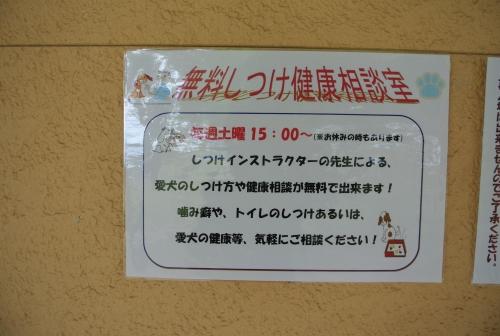 DSC_3997_01.jpg