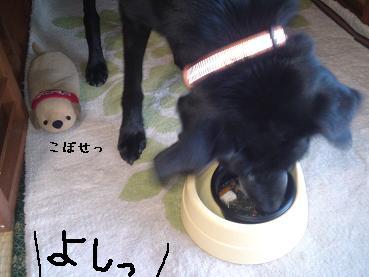 すきやき03
