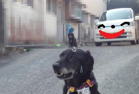 ロンくん 攻撃~!