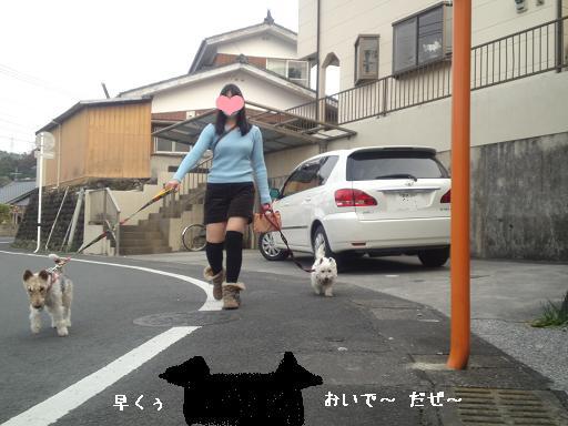 あぐちゃん&ぽっけちゃんとお散歩01