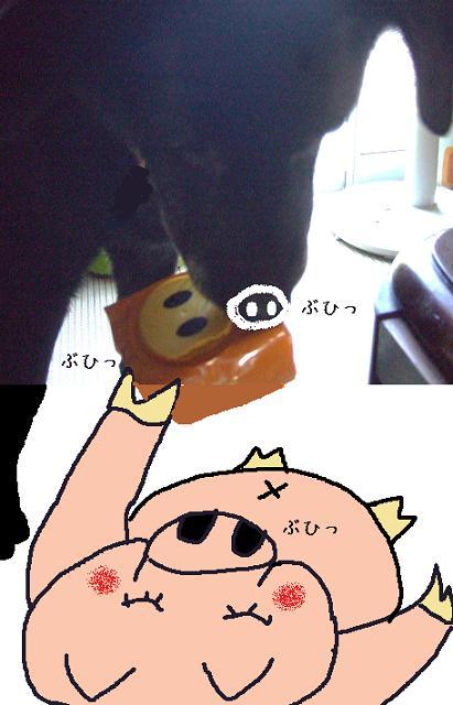 3-buhi.jpg