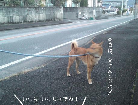 daasou-ken02.jpg