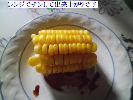CIMG1302041.jpg