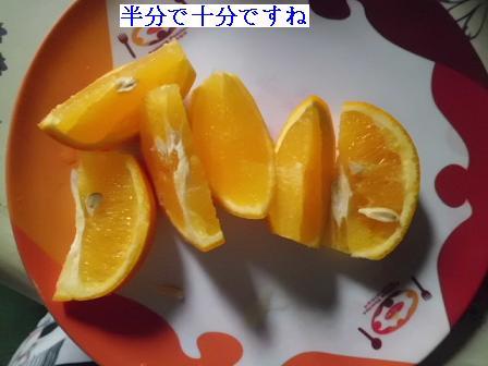 CIMG1302042.jpg