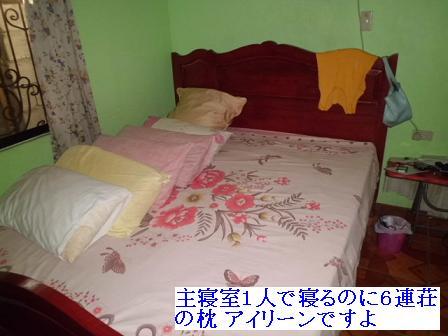CIMG1304231.jpg