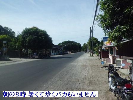 CIMG1305081.jpg