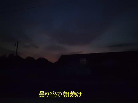 CIMG1305241.jpg