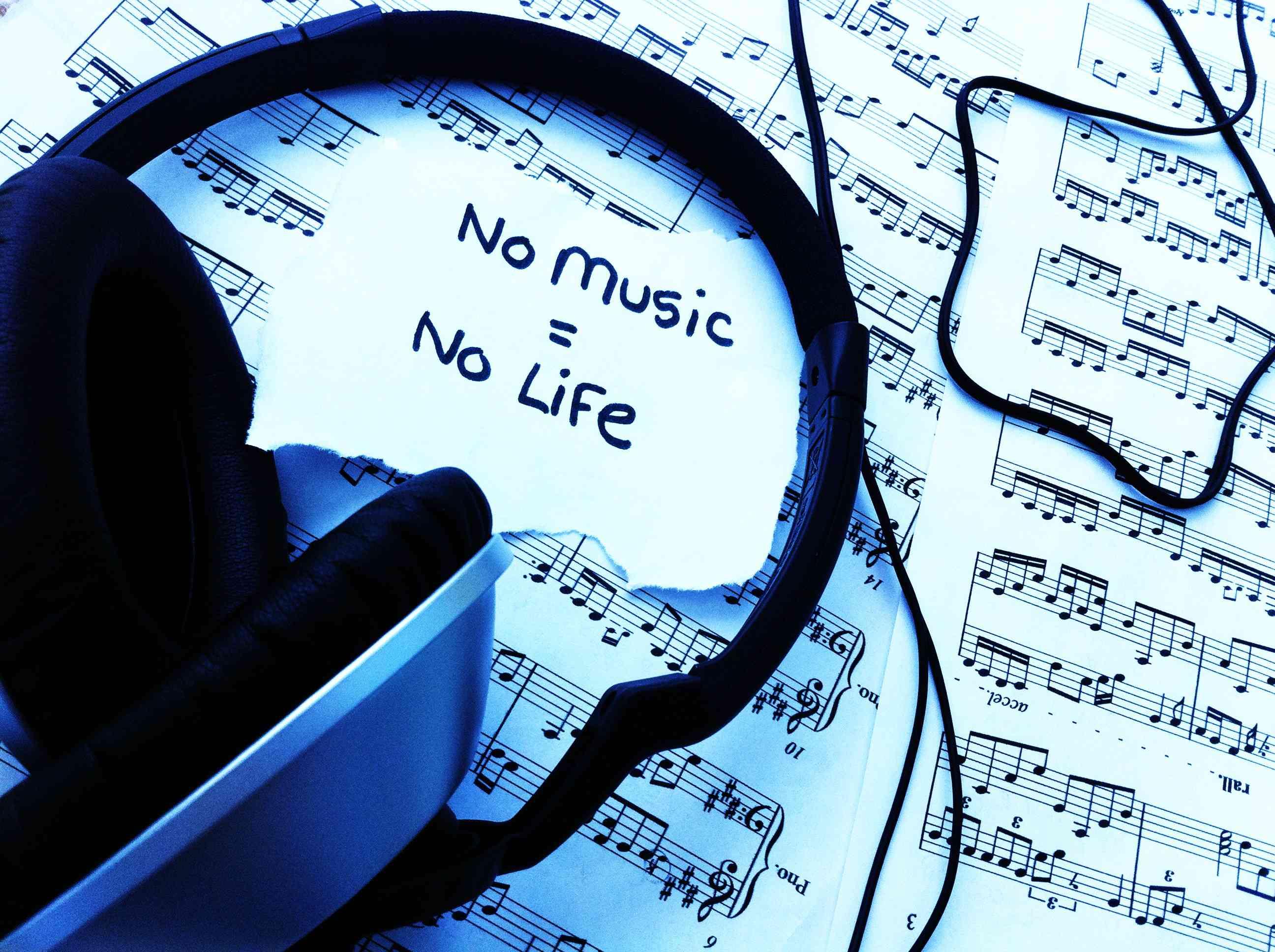 No-Music,-No-Life 2