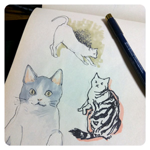 猫らくがき
