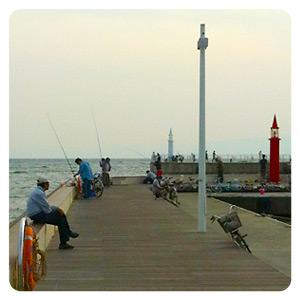 つり球で釣りをしていた片瀬漁港東プロムナード