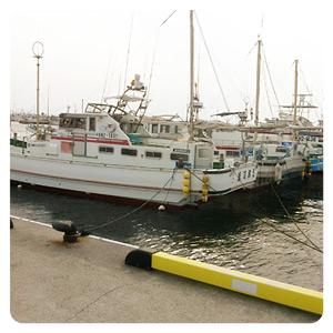 プロムナードに停まる船