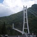 なかなか大きな橋だにゃ~
