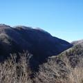 山奥からコンニチワ