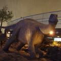 2メートル強の大きな恐竜
