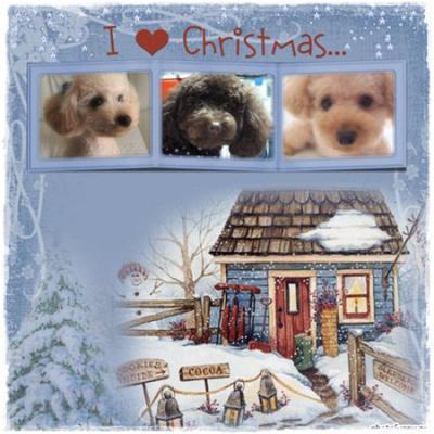 クリスマスRin1