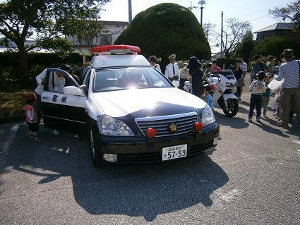 PA200229.jpg