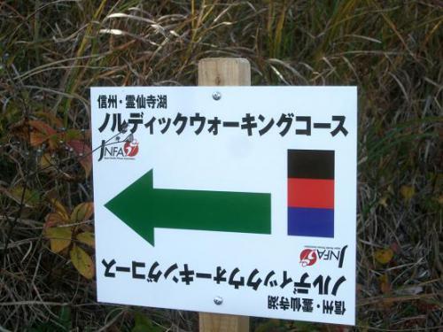 幸せの道11