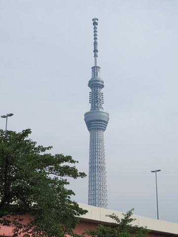 0617SAKUMO1.jpg