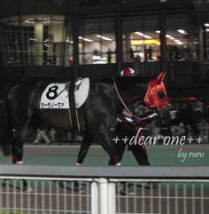 東京シティ競馬120817_5