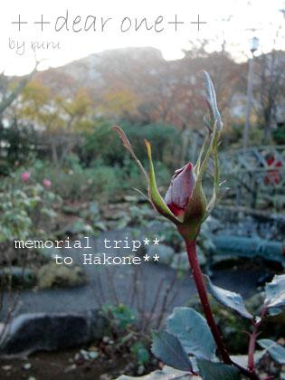 箱根旅行121201_22
