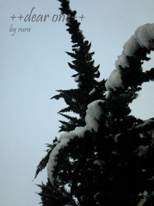 初雪130114_2