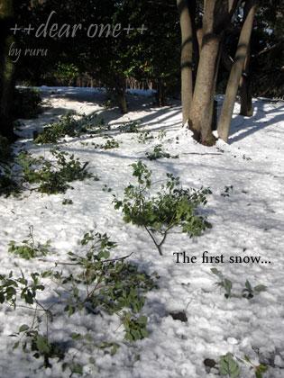 初雪130115_9