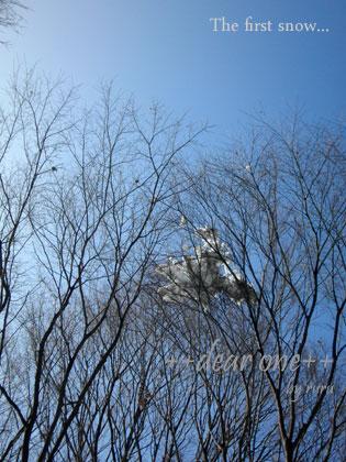 初雪130115_11