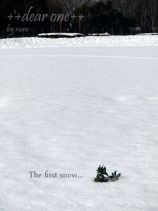 初雪130115_17
