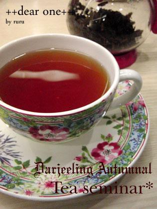 紅茶セミナー130208_5
