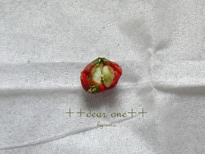 シルクジャスミンの種130328_3