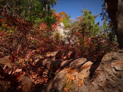 11.露岩区間の登り